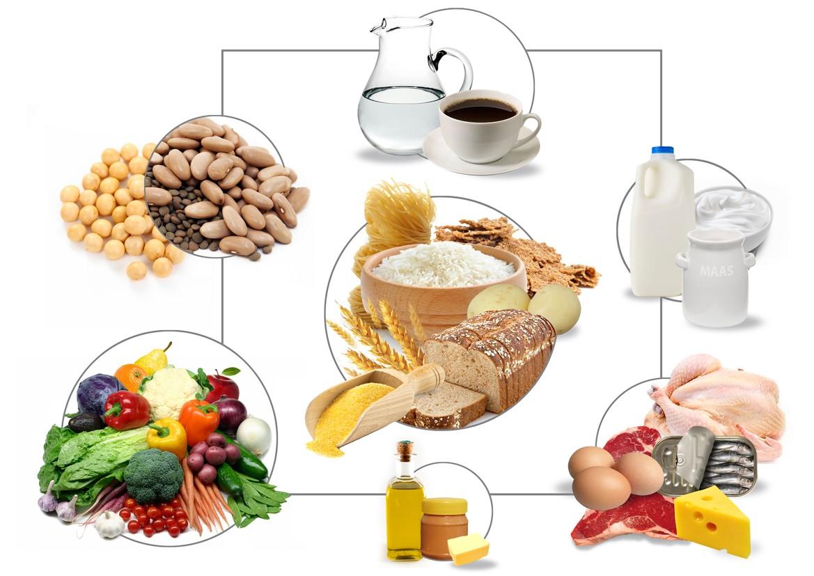 SA food based guidelines